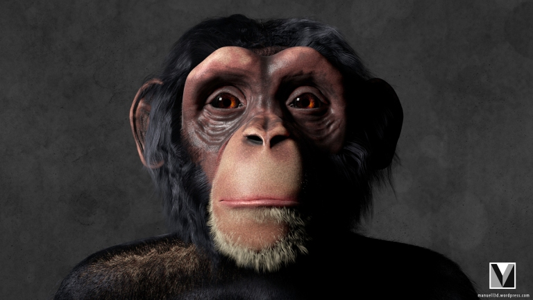 chimp_render_1_watermarked